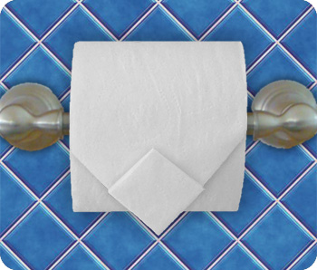 Toilet paper diamond 5