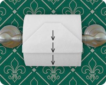 toilet paper gem