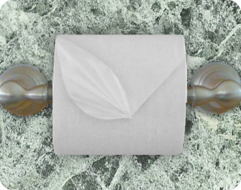 toilet paper leaf