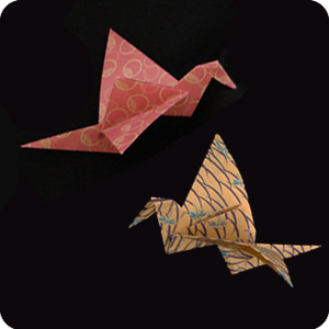 Action Origami by Rick Beech Book Review | Gilad's Origami Page | 300x300