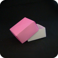 Origami Maxu Box