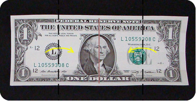 dollar bill money easy box