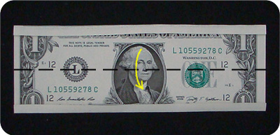 dollar bill origami money ring